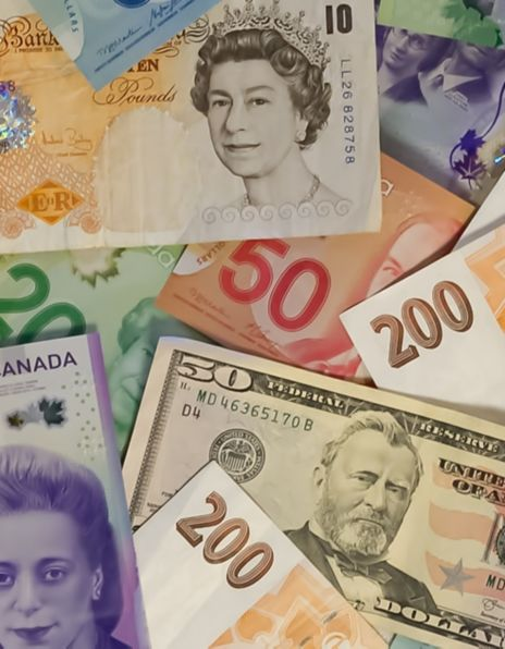 Sedler i mange ulike valutasorter
